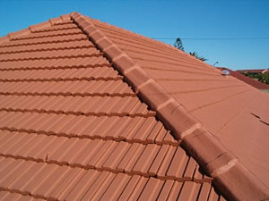 clay roof tiles painted with plascon Nuroof